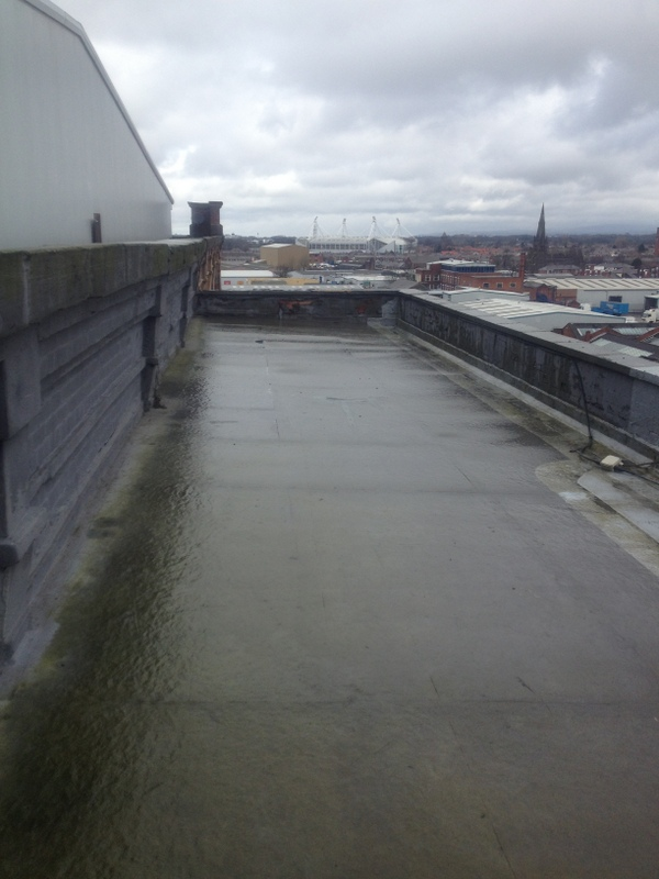 roof1_before1